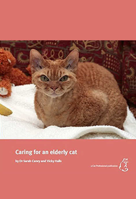 Caring for Eldery Cats